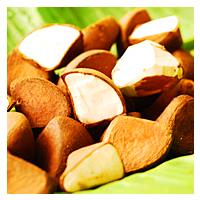 Andiroba-seed-oil